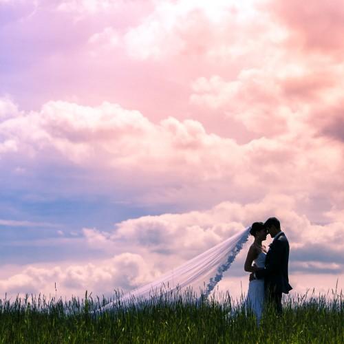 Kitchener-Waterloo Wedding Photographers | 2014 in Review